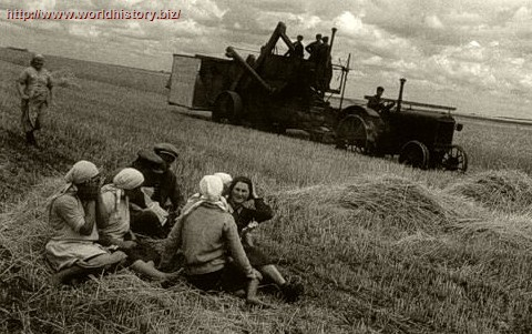 Collective Farming in the USSR