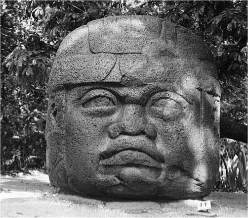 the olmec culture and belief We know very little about the olmec - a mysterious culture considered by many as the mother civilization of the olmecs - who they were, where they came from still remains a mystery ancientpagescom tree is deeply rooted in beliefs and cultural traditions of ancient people around.