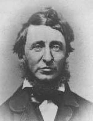 thoreau expresses nonconformity Nonconformity quotes  blindly to conventional prejudices and chooses instead to express his opinions courageously and honestly  henry david thoreau.