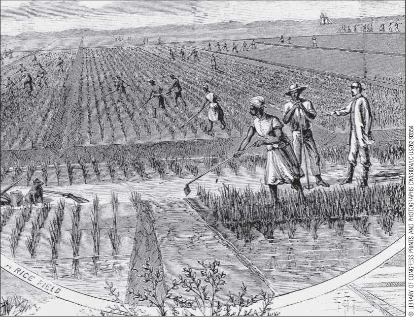 slavery in colonial and antebellum periods In america, slavery played a significant role throughout colonial and antebellum periods some historians argue that slavery contributes to the development of american economy, as slaves provide a cheap source of agricultural workforce.