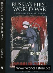 Russia's First World War: A Social and Economic History